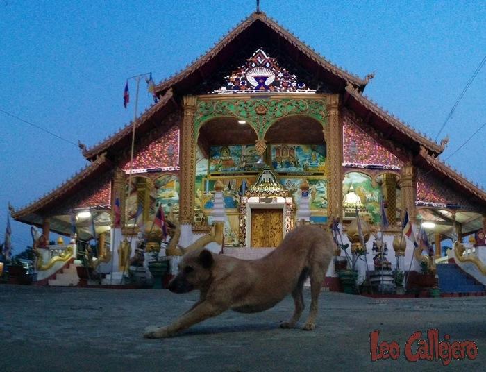 Bangkok y Laos – Día 3 (15/04/15)