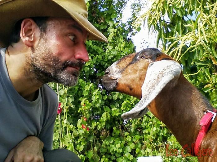 Australia (Tasmania) – Conociendo la granja Plumplot