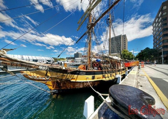 Australia (Tasmania) – Idas y venidas a Hobart