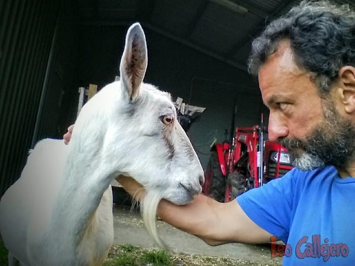 Australia (Melbourne) – Conociendo Peace Farm