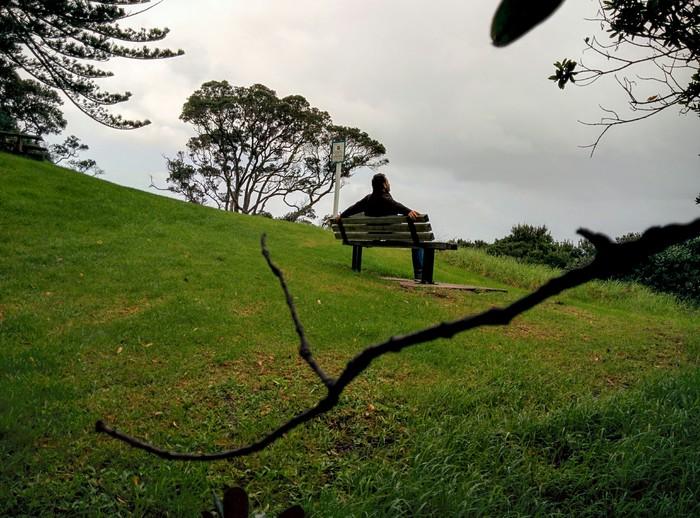 Nueva Zelanda (Whangeteau) – Conociendo Leigh