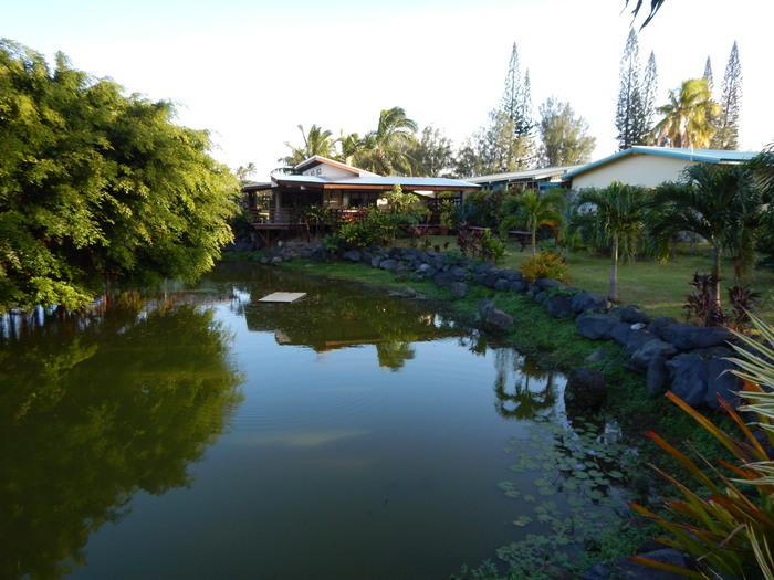 Cook Islands (Rarotonga) – Posible curro….