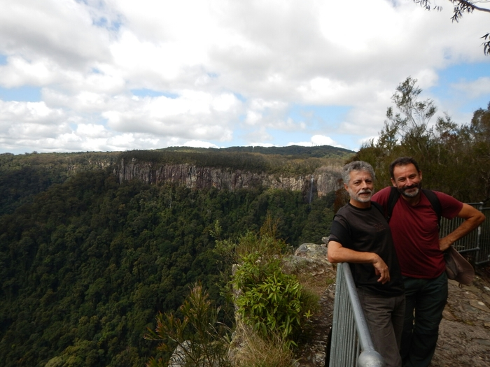 Australia – Springbrook National Park y Gold Coast