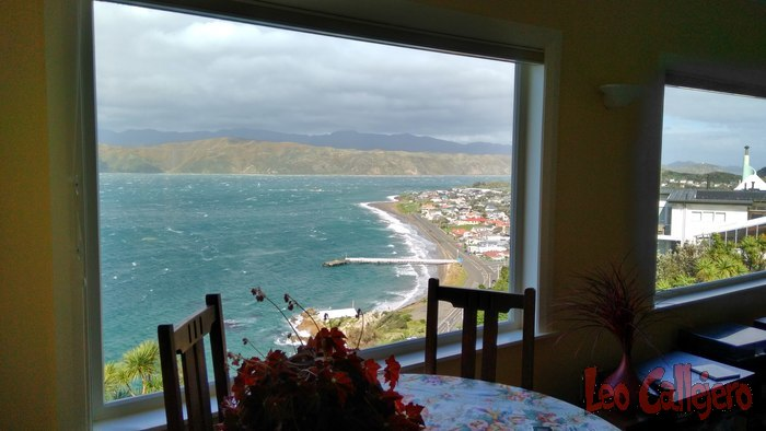 New Zealand (Wellington) – Housesitting en Wellington