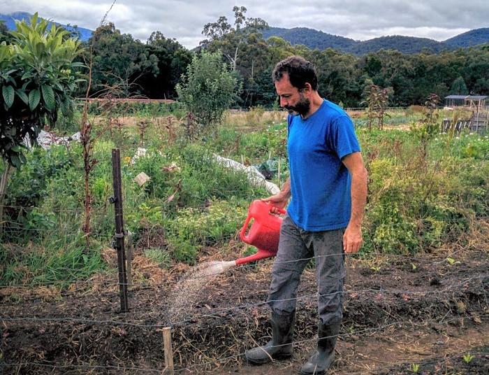 Australia (Melbourne) – Plantando semillas